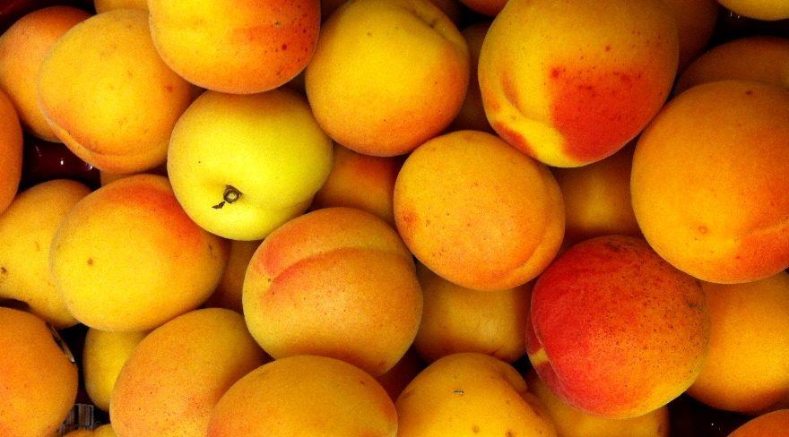 Las 5 frutas del amor